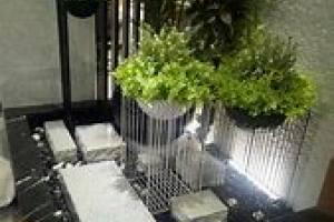 """杭州植物租赁,把""""春天""""租回家"""