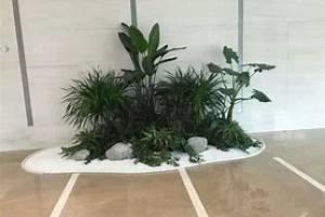 关于花卉绿植租摆设计有哪些建议