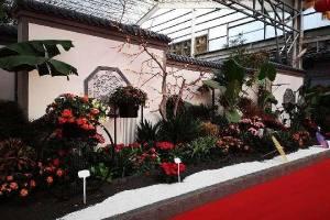 第20届中国(青州)花卉博览交易会隆重开幕