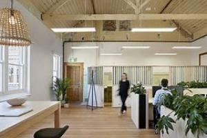 绿植租赁公司发展要注意什么