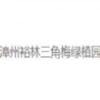 漳州裕林三角梅绿植园
